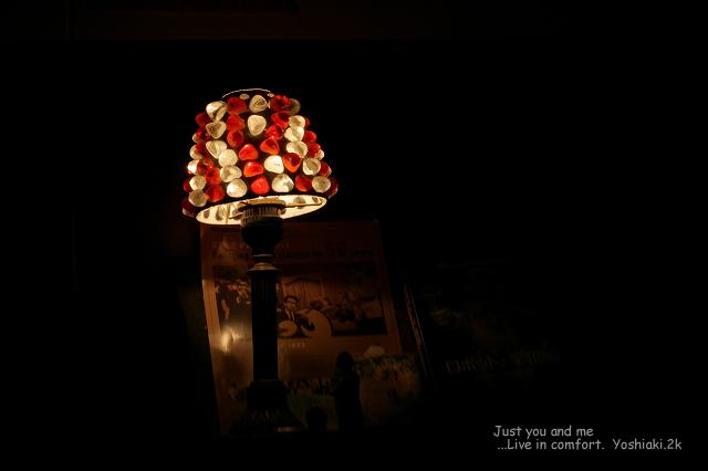 君と行った 灯りのした 今も忘れない